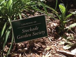 Gardenclub_volunteerpg